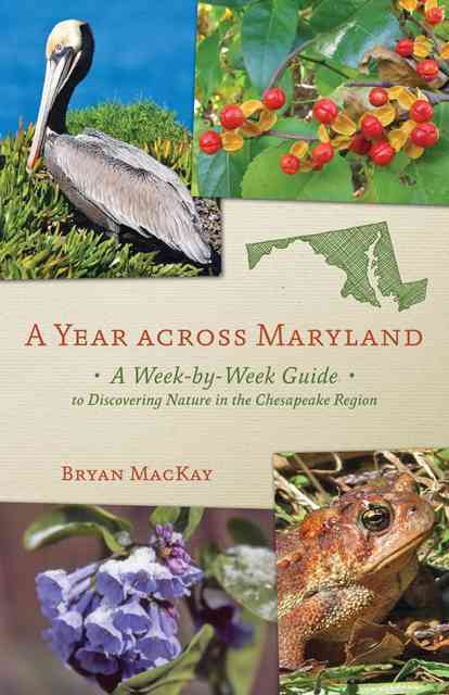 A Year Across Maryland By MacKay, Bryan